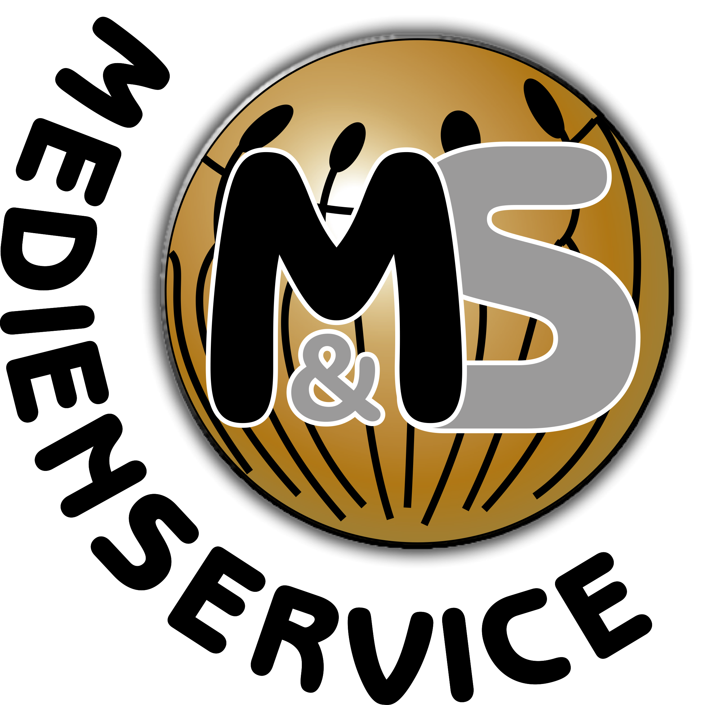 MS-Medienservice